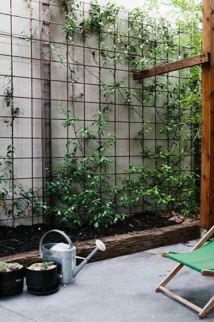 jardin-zen-exterieur-moderne.jpg